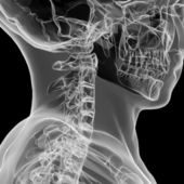 X-ray view of human cervical spine — Stock Photo