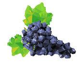 Poligonal üzüm meyve şekil — Stok Vektör