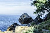 Глядя на океан — Стоковое фото