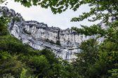 Stenar i skogen — Stockfoto