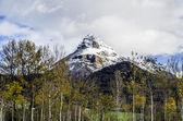 The frozen mountain — Stock Photo