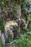 Face in the rock — Stock Photo