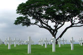 Marble Crosses on a Cemetery — Stock Photo