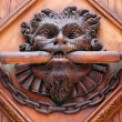 A lion door knob on an old church door — Stock Photo