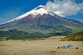 A frontal view of the majestic Cotopaxi — Stockfoto