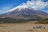 View of the majestic Cotopaxi volcano — Stock Photo