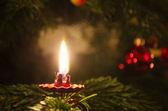 Noel ağacına mum — Stok fotoğraf