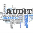 "Word Cloud ""Audit"" — Stockfoto #37576739"