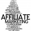 Word Cloud Affiliate Marketing — Stock Photo #38782795