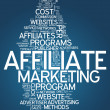 Word Cloud Affiliate Marketing — Stock Photo #38783089