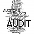 Stock Photo: Word Cloud Audit