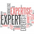 Foto de Stock  : Word Cloud Expert
