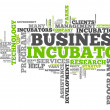 Stock Photo: Word Cloud Business Incubator