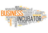 Word Cloud Business Incubator — Stock Photo