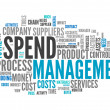 Word Cloud Spend Management — Stock Photo #41862065