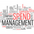 Word Cloud Spend Management — Stock Photo #41862123
