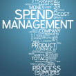 Word Cloud Spend Management — Stock Photo #41862321