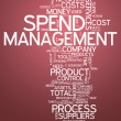 Word Cloud Spend Management — Stock Photo #41862453