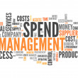 Word Cloud Spend Management — Stock Photo #41865943
