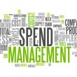 Word Cloud Spend Management — Stock Photo #41865951