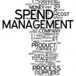 Word Cloud Spend Management — Stock Photo #41866537