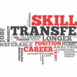 Word Cloud Skills Transfer — Stock Photo #42188247