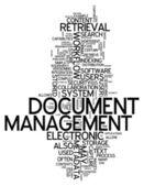 Word Cloud Document Management — Stock Photo