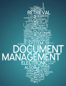 Word Cloud Document Management — Stock Photo