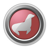 Icon, Button, Pictogram Seal — Stock Photo