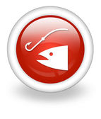 Icon, Button, Pictogram Fishing, Angling — Stock Photo