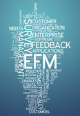 Word Cloud Enterprise Feedback Management — Stock Photo