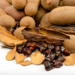 Tamarind is a popular food of Southeast Asia, North Africa and India — Foto de Stock