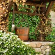 Old water well and a wooden bucket among ivy leaves — Stock Photo