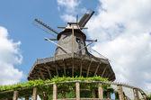 Old Windmill in Sanssouci Park, Potsdam, Germany, Europe — Stockfoto