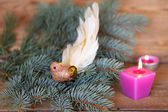 Luxury decoration Christmas birdie — Stock Photo