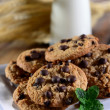 Cookies and Milk — Stock Photo #21010945