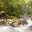 Great Smoky Mountains - Stock Photo