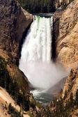 Yellowstone Lower Falls — Stock Photo