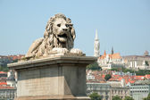 Budapest cityscape — Stock Photo