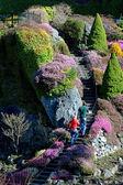 Butchart κήπους — Φωτογραφία Αρχείου