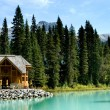 Emerald lake — Stockfoto