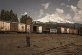 Mount Shasta — Stock Photo