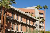 Университет штата Аризона — Стоковое фото