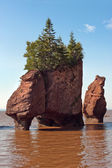 Hopewell rocks at high tide — Stock Photo