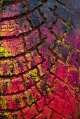 Bunte abstrakte Textur der alten Auto-Sonnenblende — Stockfoto