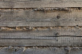 Close-up of the wall of the timber — Stock Photo