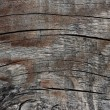 Close-up of the texture of old wood — Stock Photo
