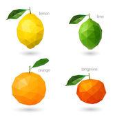 Polygonal fruit - citrus. Vector illustration — Stock Vector