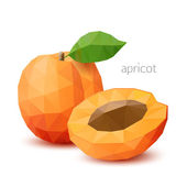Polygonale frucht - apricot. vektor-illustration — Stockvektor