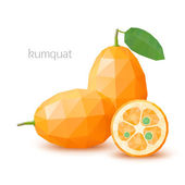 Polygonal fruit - kumquat. Vector illustration — Stock Vector